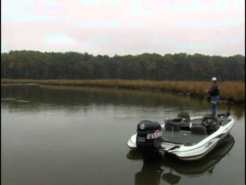 Nanjemoy creek potomac river bass fishing youtube for Potomac river fishing spots