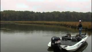 Nanjemoy Creek Potomac River Bass Fishing
