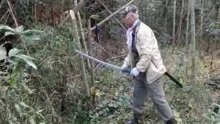 老齢化と労働力過疎の連関、放置されたまま繁茂する竹林が全国規模の現...