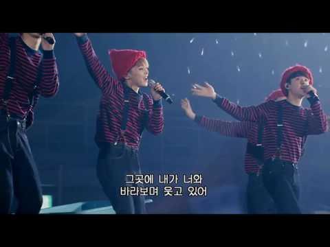 Exo-Peter Pan Live