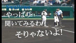東京ヤクルト 青木 宣親『やっぱり聞いてみるわ  「そりゃないよ!」 』vs 阪神 2019年7月20日 甲子園球場