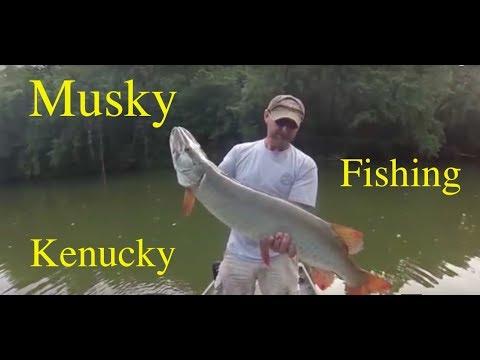 Kentucky Musky Fishing