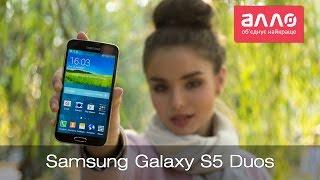Видео-обзор смартфона Samsung Galaxy S5 Duos