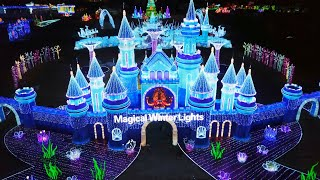 Magical Winter Lights Wins Heavyweight Trophy - The Great Christmas Light Fight