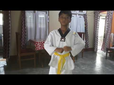 Dhritiraj taekwondo video