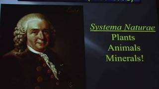 Linnaeus lecture 2011 - Mineral Surfaces, Geochemical Complexities, and the Origins of Life