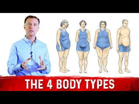 What Are The 4 Body Types?