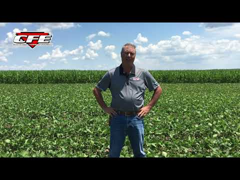 Soybean Stress Mitigation in Soybeans