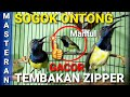 Sogok Ontong Gacor Full Tembakan Zipper Masteran  Mp3 - Mp4 Download