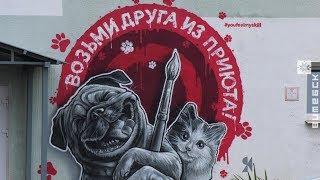 Граффити украсило стены приюта для животных в Витебске (04.10.2019)