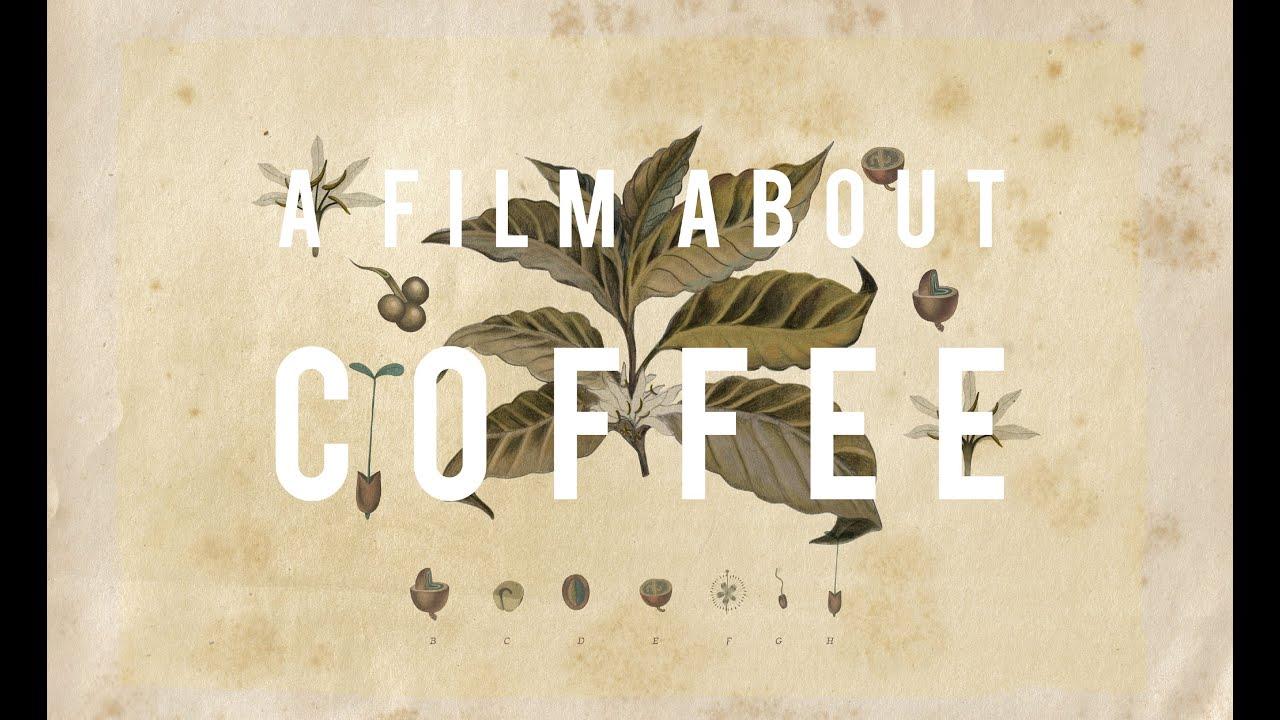 画像: 【A FilmAbout Coffee】ティザー予告 youtu.be