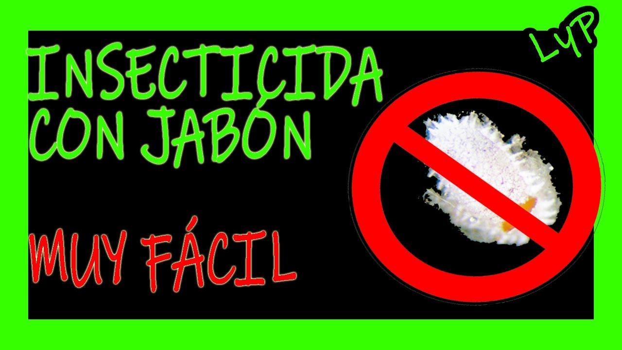INSECTICIDA CON JABÓN🌱💥 FÁCIL Y ECOLÓGICO 💥Acaba con las plagas e insectos RÁPIDO Casero y económico