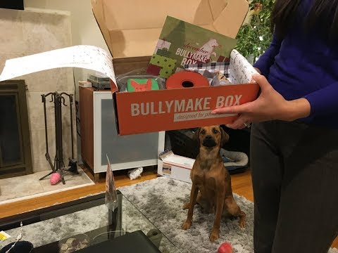 Bullymake Unboxing & Review - December 2017 for 40 Lb Dogs (Giveaway Closed)