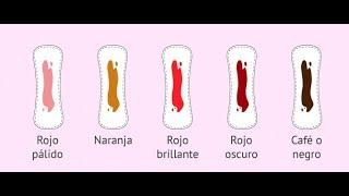 Voici pourquoi tes menstruations sont rares et noires Santé Parfaite & Divertissement