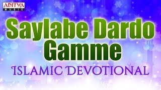 Saylabe Dardo Gamme | Hussain S. Mandlaywala | Islamic Devotional Songs