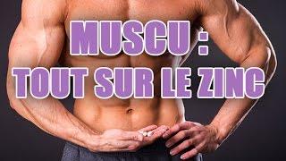 Aliments et gélules riches en Zinc pour prendre de la masse musculaire