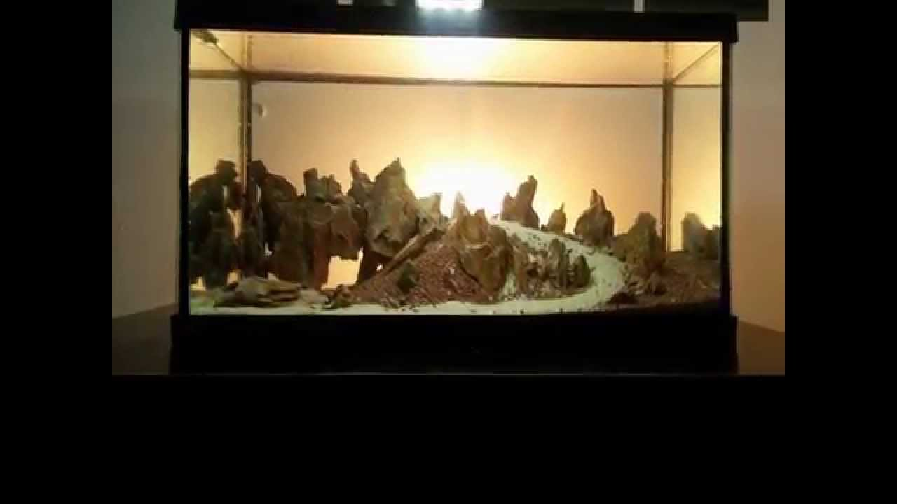 Aquascaping setup - YouTube
