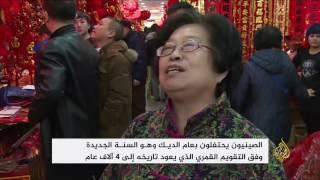 الصينيون يحتفلون بعام الديك