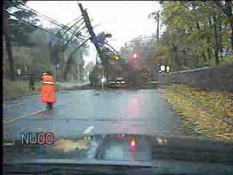 Scarsdale police dashboard cam captures a tree falling on a motorist on Post Road.
