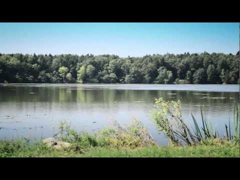 KJE JE TISTA TRAVA, Boštjan Korošec (Official video)