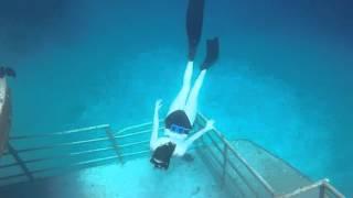 Freediving Bermuda ~ Sea Venture Shipwreck
