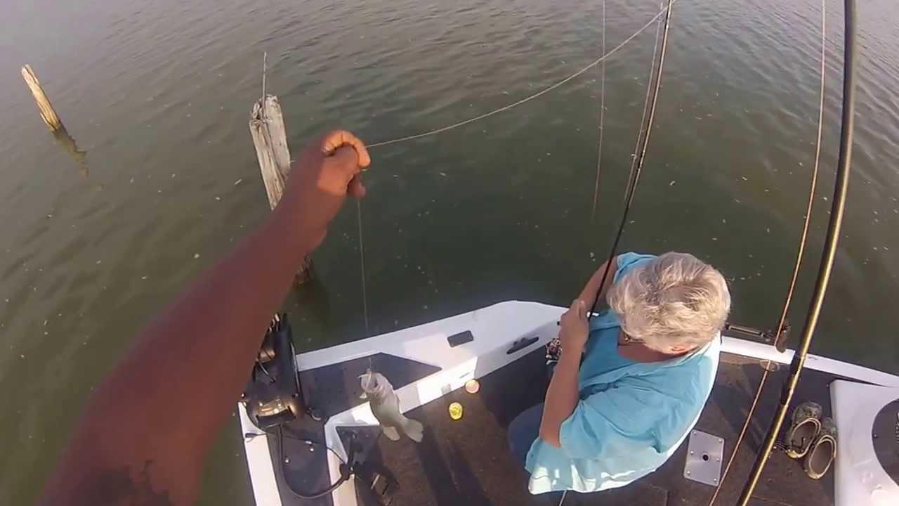 Lake waco crappie caught 8 24 13 youtube for Lake waco fishing report