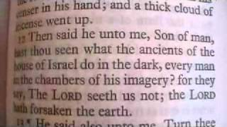 Ezekiel 8 Holy Bible (King James)