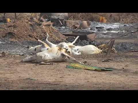 Boko Haram Attack Borno Villages