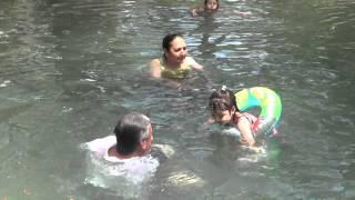 2. Abuelo tiburón y Caty nadando