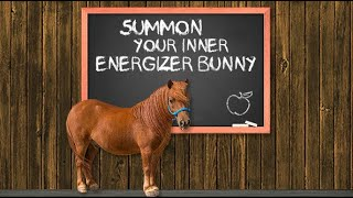 Fundamentals With Phoenix: Lesson 7 - Summon Your Inner Energizer Bunny