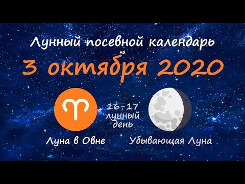 [3 октября 2020] Лунный посевной календарь огородника-садовода | Флористикс Инфо