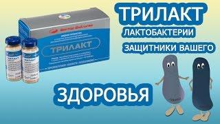 Как поднять иммунитет. Лактобактерии - витамины для иммунитета
