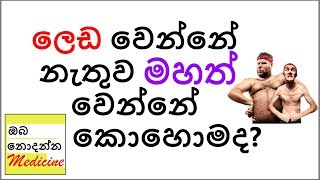 How to gain weİght healthily? How to Gain Fat | Sinhala Medical Channel