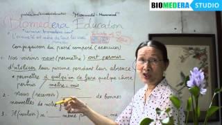 Bài 68: Bài tập chia động từ thì quá khứ kép - Conjugaison du passé composé (exercices 1, suite)