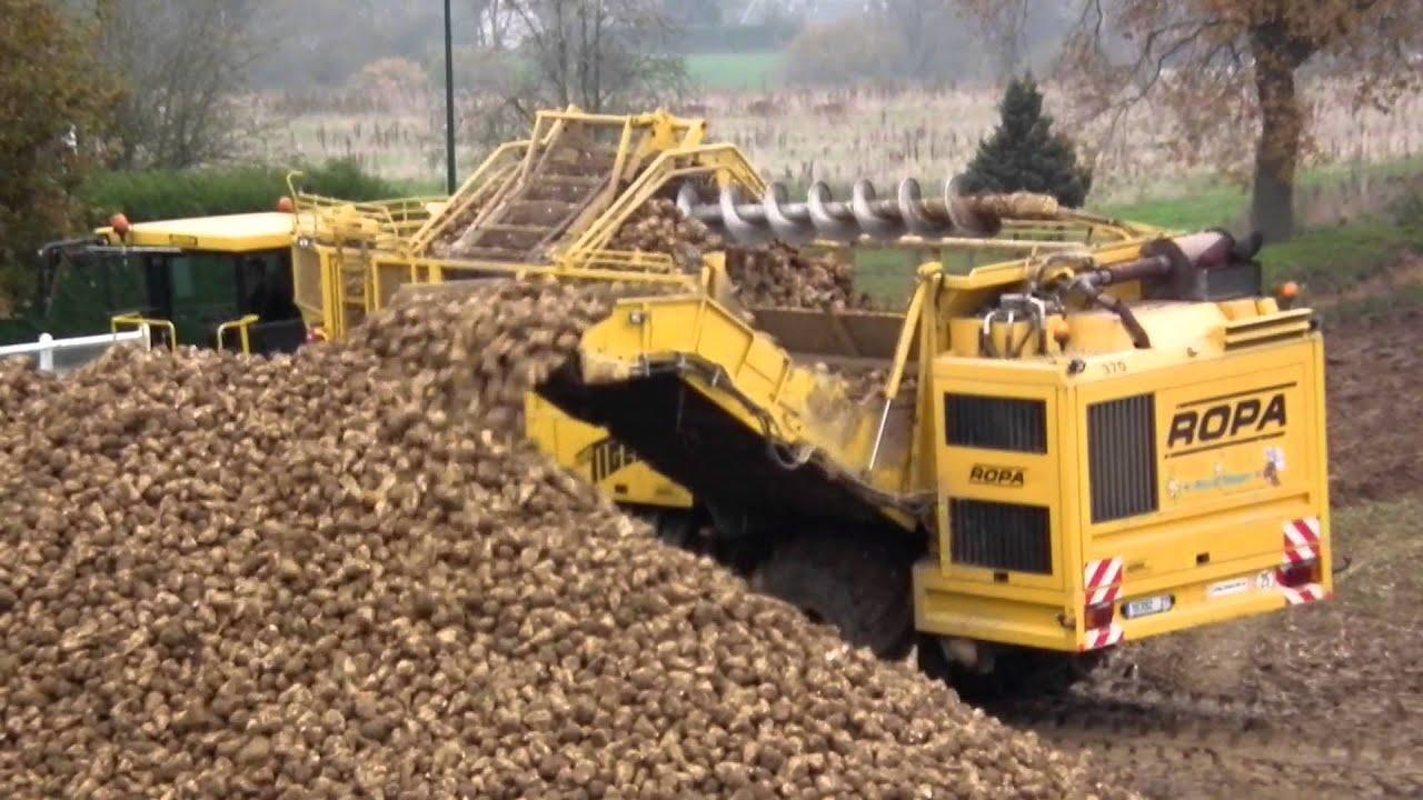 Machine ramasser les betteraves sucre youtube - Machine pour ramasser les pommes ...