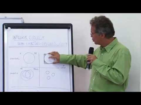 2009 06 23 MICHEL SALOFF COSTE UI 5 ECOLOGIE.mov