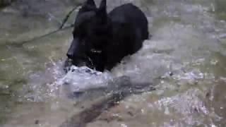Mingan au ruisseau