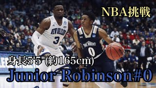 "【NBA挑戦】""驚異の身体能力"" Junior Robinsonとは一体何者なのか"
