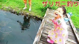 入れ食い状態!?ザリガニ釣りでママが大騒ぎww himawari-CH thumbnail