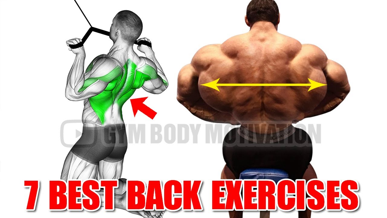 7 Effective Exercises to Build a Big Back Fast