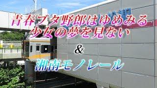 湘南モノレール・青春ブタ野郎はゆめみる少女の夢を見ない×湘南モノレール2(Shonan Monorail)