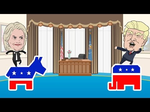 How does the US general presidential election process work?