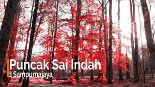 Puncak Sai Indah No Vokal Karaoke Pop Lung