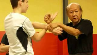 Wing chun - Lo man Kam training - France feb 2013