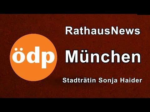 RathausNews #3 vom 06.06.2019 mit Sonja Haider