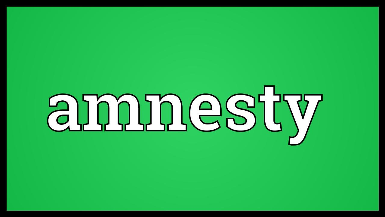 Amnesty Meaning - YouTube