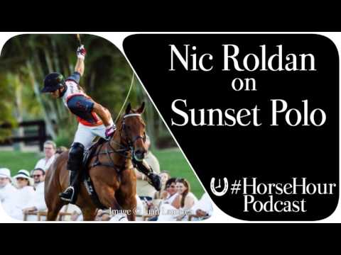 Nic Roldan: Sunset Polo