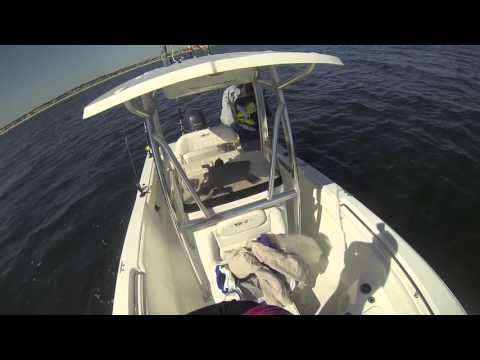 WHAT A Crazy Day In Fall Off NC Coast For King Mackerel, See Video To Believe!