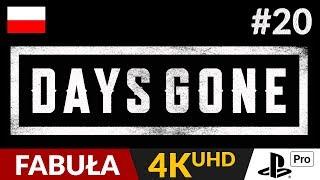 Days Gone PL  #20 (odc.20)  Pogawędka z Mike | Gameplay po polsku 4K