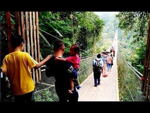 panduan-wisata-'-dari-jabodetabek-ke-jembatan-gantung-''-situ-gunung-sukabumi
